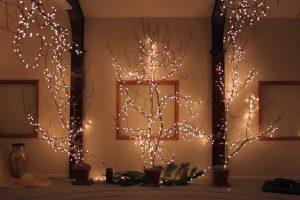 Brewster Lights